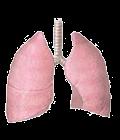اطباء الصدر و الرئة