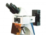 Microscope Flourecent GX-500F