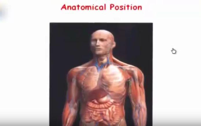 مقدمة في علم التشريح Language of Anatomy