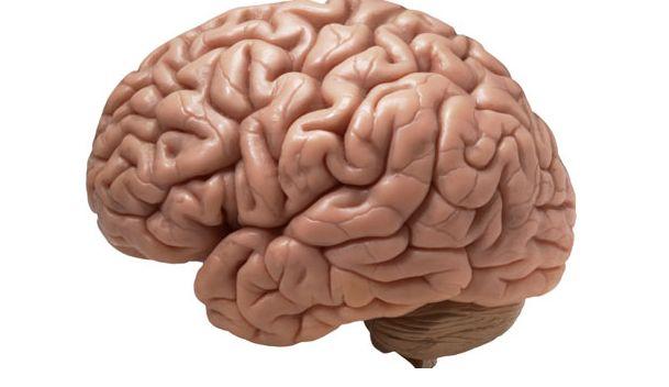 دراسة : الفقر يؤثر سلبا على صحة المخ وكفاءته