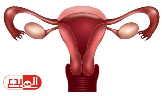 تطوير تحليل جديد يمكنه التنبؤ بسرطان عنق الرحم