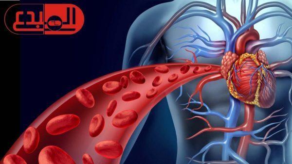 تعرف على 5 اطعمة تنظف شرايين القلب وتمنع الجلطات