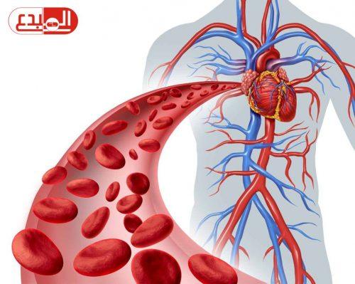 """ثورة طبية .. علماء يبتكرون """"دم اصطناعي"""" على شكل مسحوق"""