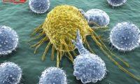 علماء بريطانيون يطورون فيروس معدلا وراثيا يقتل خلايا السرطان
