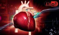 علماء يتوصلون إلى بروتينات تلعب دورا فى إصلاح تلف القلب