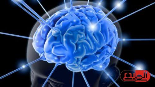 دراسة: المخ هو من يحدد رغبتك فيما تأكل من خضراوات أو فاكهة