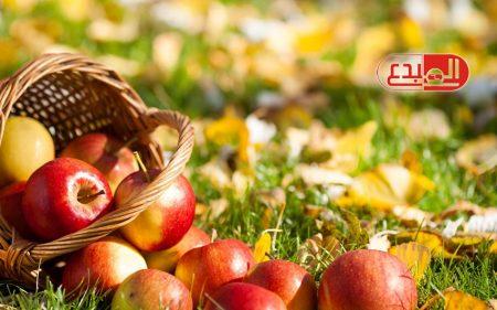 استخدم الطب البديل لعلاج الهضم والسكر .. وتنظيف الأسنان بالتفاح