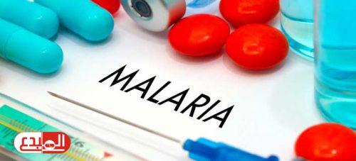 الفطريات المعدلة وراثيا تقضي على 99 ٪ من بعوض الملاريا