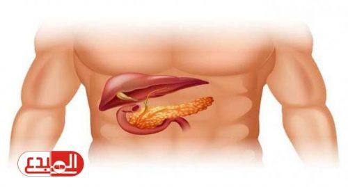 دراسة: تقليل الدهون يقلل من مخاطر الإصابة بسرطان البنكرياس!