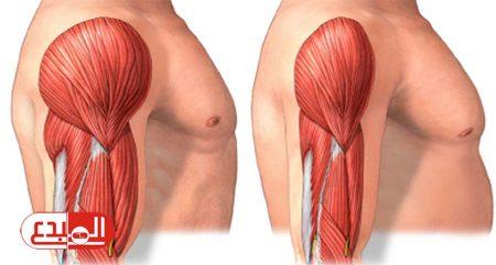أمل جديد لمرضى ضمور العضلات باستخدام الخلايا الجذعية