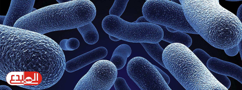ليست جمعيها ضارة .. البروبيوتيك بكتيريا نافعة تعيش في جهازك الهضمي