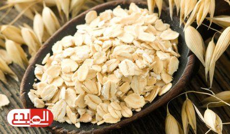 فوائد الشوفان منها إنقاص الوزن وتقليل نسب الكوليسترول